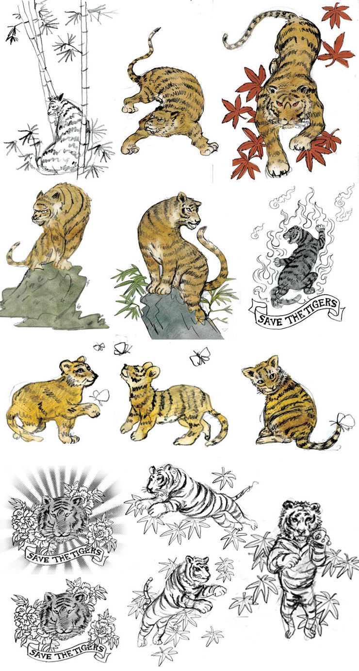 Libero: Tiger Sketches