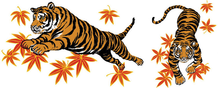 Libero: Unused Tiger Sketches