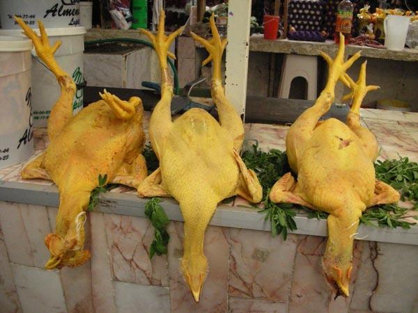 Puebla, Mexico (June 2009): Chickens