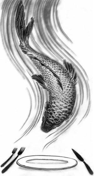 Quick Fish Illustration